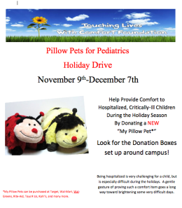 The Pillow Pets will be given to critically ill children who are hospitalized this holiday season. (Photo: Dr. Mary Adkins).